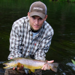 Beautiful Brown from the Unica river, Slovenia