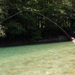 fly-fishing-slovenia17-10