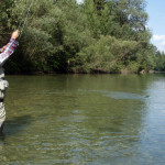 fly-fishing-slovenia17-6