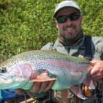 Wild rainbow trout from the Sava Dolinka river - Slovenia