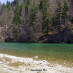 Grayling area - Sava river Slovenia