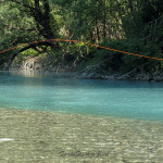 Clear waters mixing turbid ones - Sava Dolinka river