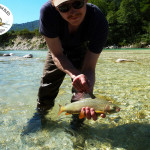 Grayling - dry fly fishing