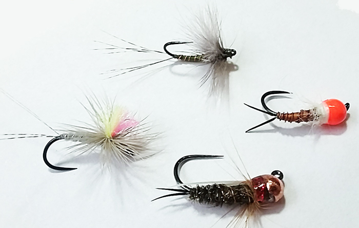 flies-fish-slovenia1