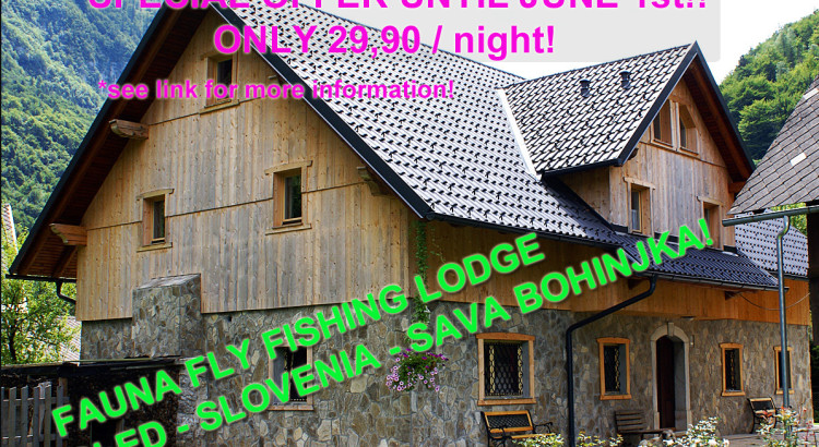 special-offer-lodge