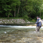 Small trout rivers of Slovenia - jewels!