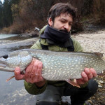 Chasing Hucho - catching the Pike!