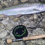 winter-fly-fishing-slovenia2